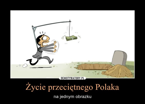 system mlm polacy